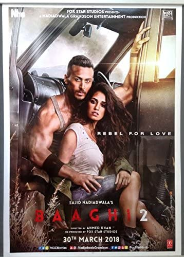baaghi-2 movie poster