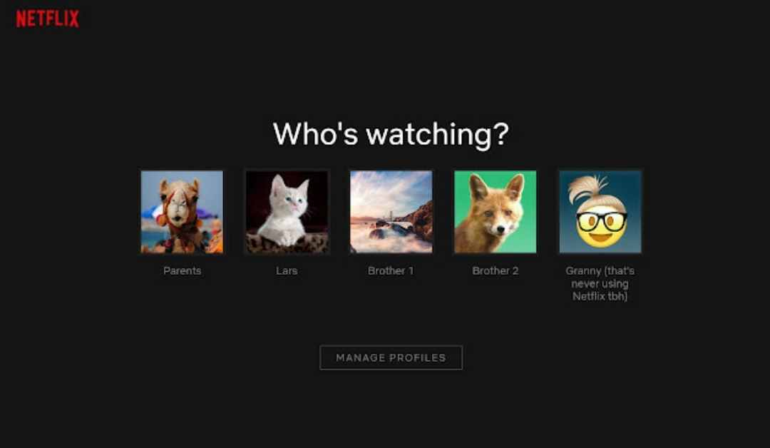 3 Easiest Ways to Add Custom Profile Picture for Netflix